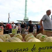 Une opération choc pour vendre des fruits et légumes au «prix juste»