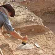 Homo erectus a-t-il disparu parce qu'il était paresseux ?