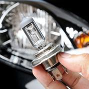 Les ampoules halogènes interdites à la vente à partir du 1er septembre