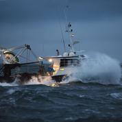 Bataille navale entre pêcheurs français et britanniques autour de la coquille Saint-Jacques