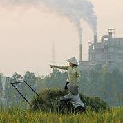 La hausse du CO2 réduit l'apport nutritif des plantes