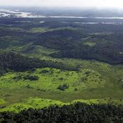 Sauver la biodiversité est un choix politique