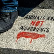 Des militants antispécistes arrêtés à Lille