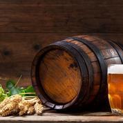 Et si l'homme s'était mis à cultiver la terre pour étancher sa soif de bière ?