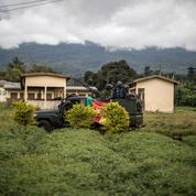 Cameroun : l'«Ambazonie» anglophone s'enfonce dans la guerre