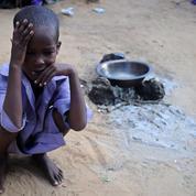 124 millions de personnes souffrent de faim aiguë dans le monde