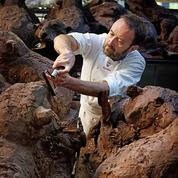 Patrick Roger, le «Rodin du chocolat»
