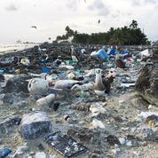 Clipperton, un atoll français paradisiaque noyé sous les déchets plastiques