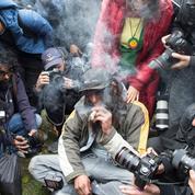 François d'Orcival : «La danse en transe du cannabis»