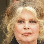 Brigitte Bardot flingue à tout-va les chasseurs, une espèce protégée par le gouvernement