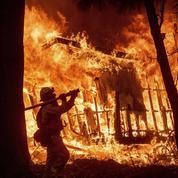 Californie : les incendies ont fait au moins 50 morts