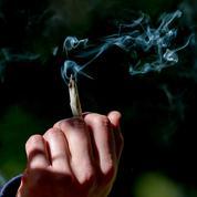 Arrêter le cannabis fait retrouver la mémoire