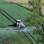 Le palmarès des départements qui achètent le plus de pesticides