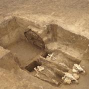 Des chevaux enterrés debout avec leur char il y a 2300 ans en Bulgarie
