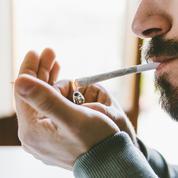 Le cannabis n'est plus une drogue de jeunes