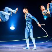 Les ombres chinoises du Cirque Phénix
