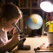 Ce qu'il faut savoir avant d'offrir un microscope