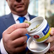 Aux États-Unis, un État souhaite légaliser le cannabis pour financer les retraites