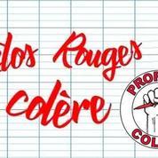Après les «gilets jaunes» et les «gyros bleus», les enseignants se constituent «stylos rouges»