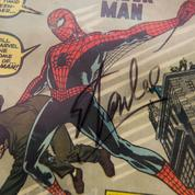 Spider-Man, Venom, Punisher ... 100.000 dollars de comics dérobés à Las Vegas