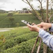 Les communes rurales, ces oubliées de la 4G