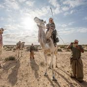 Terrorisme : en Tunisie, avec les sentinelles du désert