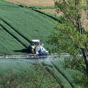 La suppression des pesticides est un sujet complexe qui mérite mieux que des voeux pieux