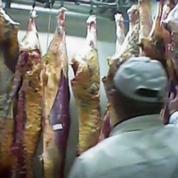 Viande avariée : au moins 150 kilos ont été vendus aux consommateurs Français