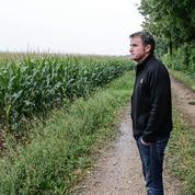Monsanto: le céréalier Paul François entre dans un nouveau round judicaire