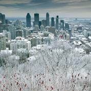 Au Québec, le rêve brisé de nombreux Français