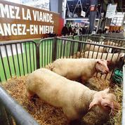 Pourquoi les Français mangent moins de viande