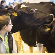 La lente reconnaissance des femmes dans le monde agricole