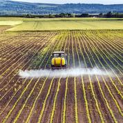 Un agriculteur agressé parce qu'il épandait des pesticides