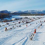 Finnmarkslopet: en Norvège, avec les mushers de la course mythique de chiens de traîneau