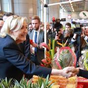 Jean-Yves Camus: «Le vote Le Pen n'est pas un feu de paille populiste»