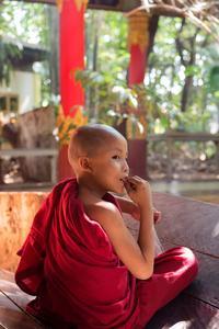 Jeune moine bouddhiste.