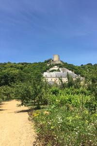 Le potager «à la française», au pied du château de la Roche-Guyon.