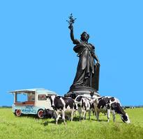 Les vaches autour du symbole de la République.