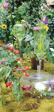 Sur le jardin de Monsieur Paul, créé par Pierre-Alexandre Risser, en hommage au cuisinier Paul Bocuse.