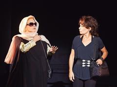 Sylvie Vartan, vocation comédienne