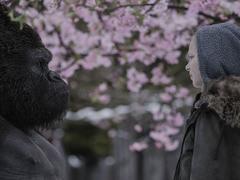 La Planète des singes parmi les plus grands films de science-fiction ?