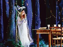 Peau d'âne, La Petite Sirène, Le Prénom... De grands spectacles pour les fêtes de fin d'année
