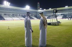 Le Qatar souhaite «le top du top» en matière de pelouse pour le Mondial 2022.