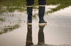 Inondation des jardins: comment freiner l'écoulement de l'eau?