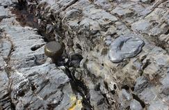 Les géologues à la recherche de clous d'or