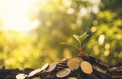 Les dividendes à la hausse dans le monde