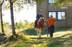 Quand des chevaux deviennent de véritables aides-soignants