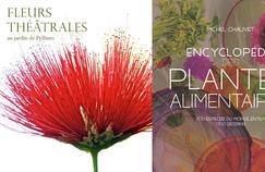 Noël: notre sélection de beaux livres sur les plantes et le jardin