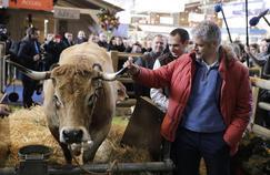 Le Salon de l'agriculture, une figure imposée pour les politiques
