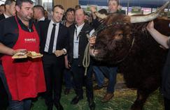 Un samedi de campagne pour Macron au Salon de l'agriculture 2019